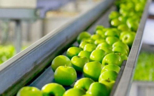 Produtos de limpeza e higiene para industria alimenticia